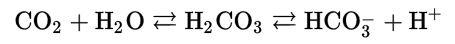 Kohlendioxid-Wasser-Reaktion