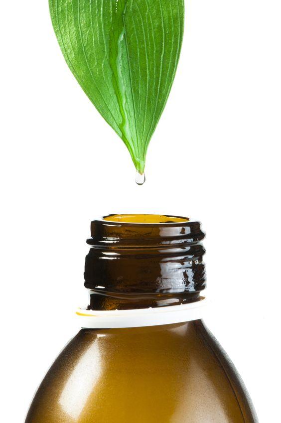 Pflanzenextrakte-Extrakte
